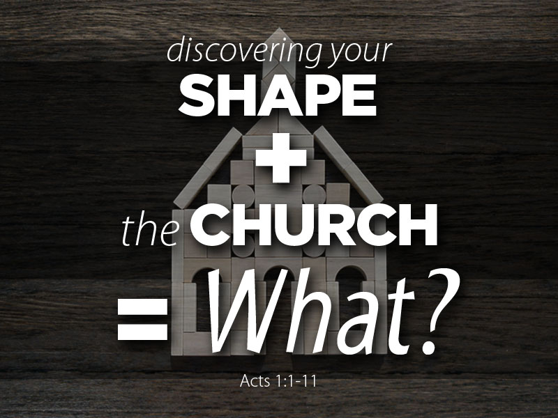 """Discovering Your SHAPE"" + ""The Church"" = What?"
