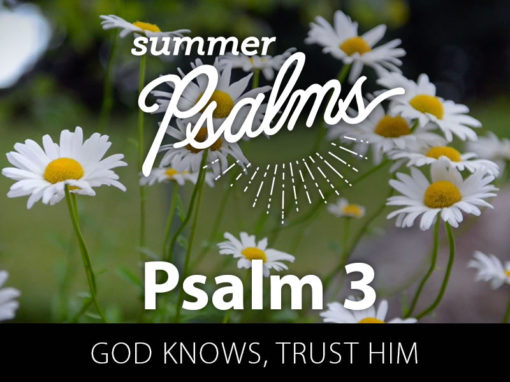 Psalm 3: God Knows, Trust Him