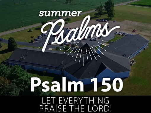 Psalms 148, 149, 150: Let Everything Praise the Lord!