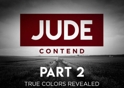 Part 2: True Colors Revealed
